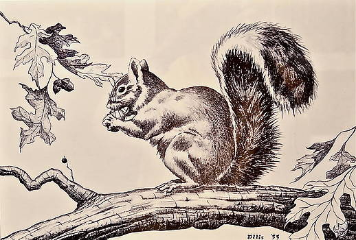 Squirrel's Snack Time by Jim Ellis