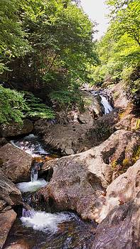 SR 215 Waterfall by Judy  Waller