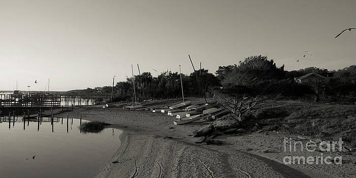 Kathi Shotwell - St. Augustine Lighthouse Park Beach 1