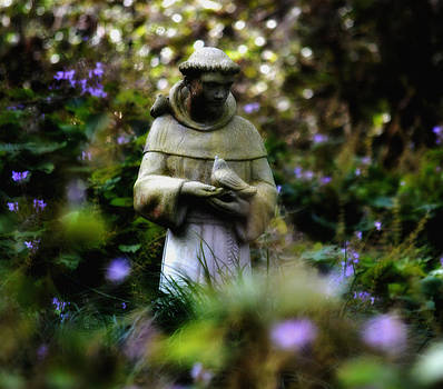 St. Francis of Assisi by Tara Miller
