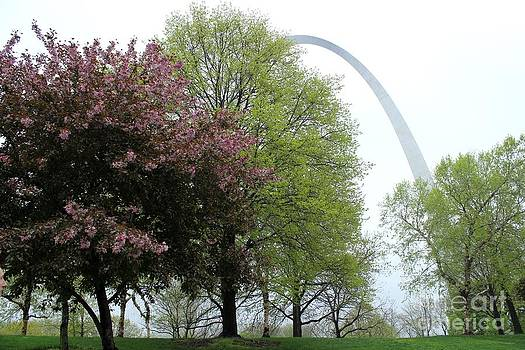 St. Louis Spring by Theresa Willingham