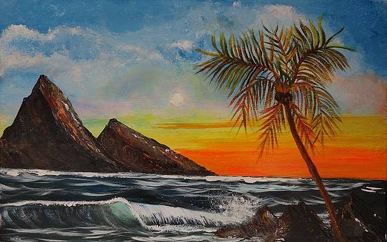 St Lucia Sunset by Patsi Stafford
