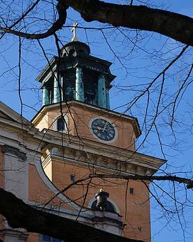 Evgeny Lutsko - St. Maria Magdalena kyrka Stockholm