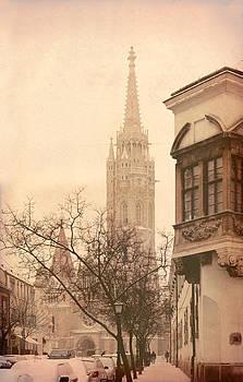 St. Matthias church in Budapest by Hrvoje Puhalo