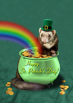 St. Patrick's Day Ferret  by Jeanette K