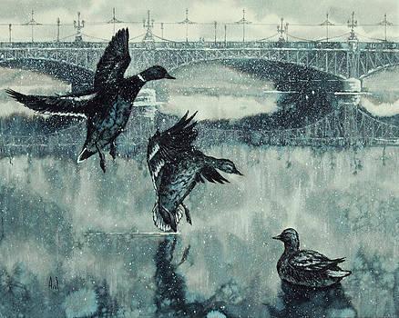 St. Petersburg ducks by Aleksey Zuev