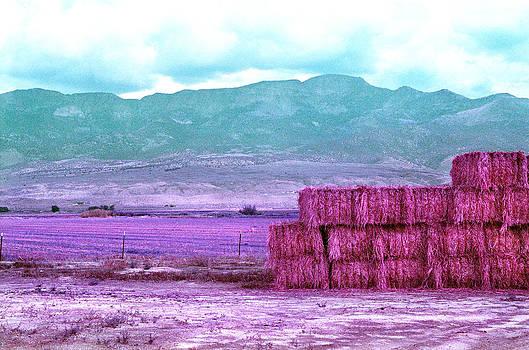 Stacked Hay Bales in Utah by Lon Casler Bixby