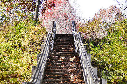 Stairs by Catherine Hill