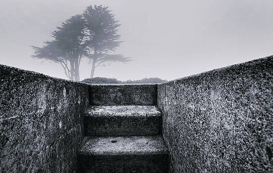 Stairs to Freedom by Laszlo Rekasi