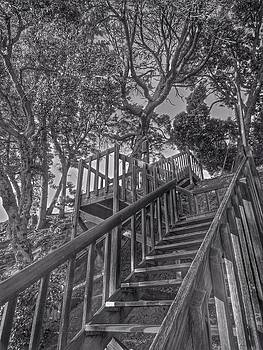 Stairway by Brian Maloney