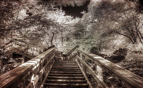 Stairway by Jay Swisher
