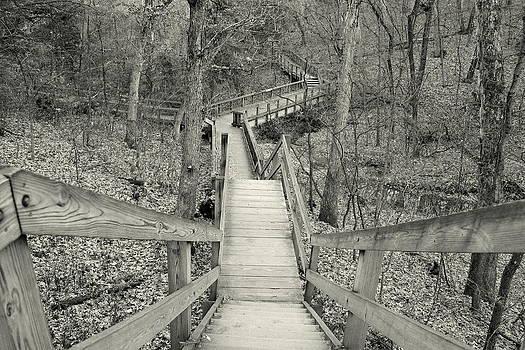 Rosanne Jordan - Stairway Maze in Black and White