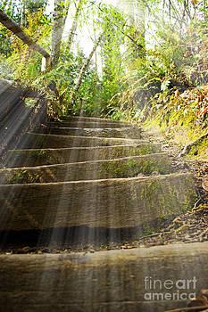 Stairway To Heaven by Deanna Proffitt