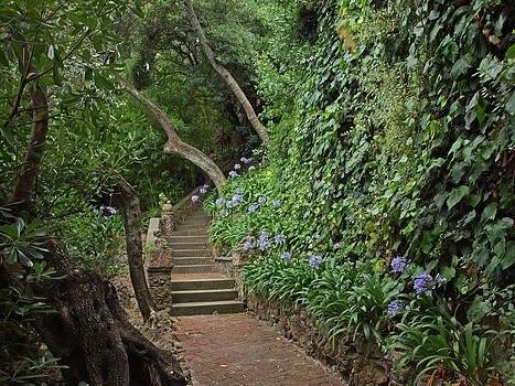 Susan Rovira - Stairway to Heaven