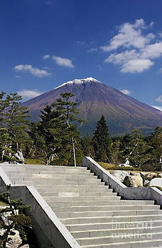 Ellen Cotton - Stairway to Mt Fuji