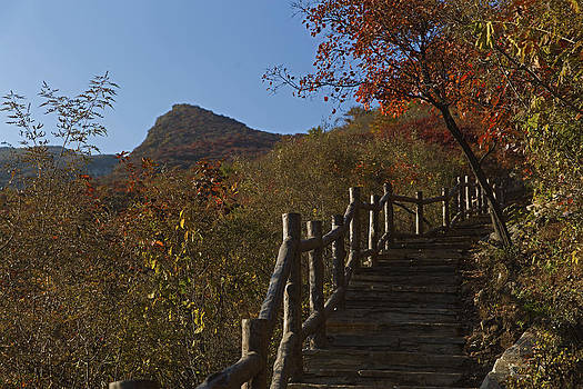 Stairway To The Top by Qing