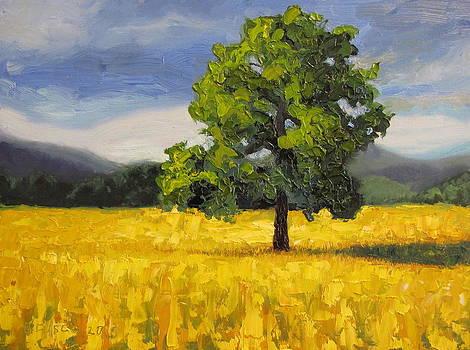 Standing Alone by Dan Fusco