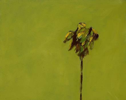 Standing Apart by Randine Dodson