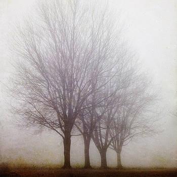 Standing Still by Irene Suchocki