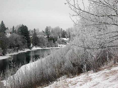 Stuart Turnbull - Stanley Park - Winter 15