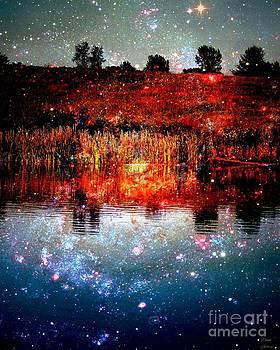 Star Dance by Dani Stites