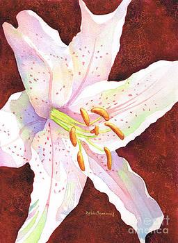 Star Gazer lily by Barbara Rosenzweig