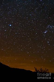 Bob Phillips - Star Light - Star Bright