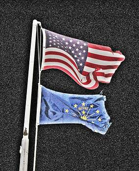 Star-Spangled and Battered by Jeanne LeMieux