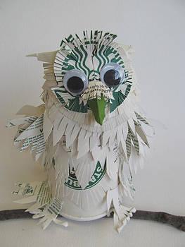 Alfred Ng - Starbucks Snowy Owl