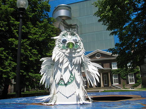 Alfred Ng - Starbucks snowy owl in Toronto