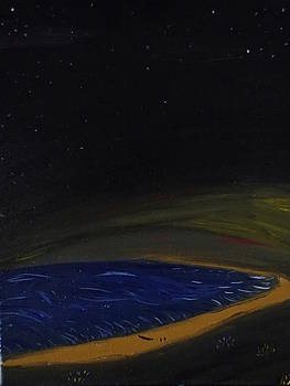 Stardust by Robert Nickologianis