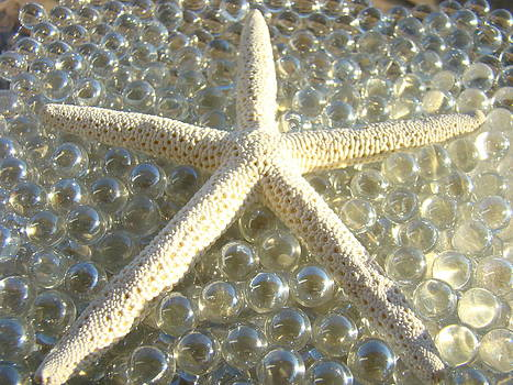 Baslee Troutman - Starfish art prints Glass Marbles Decorative