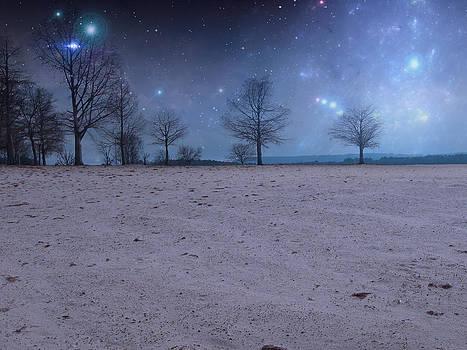 Starlit Night  by Cheryl Heffner