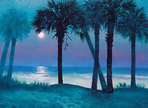 Starry Night by Blue Sky