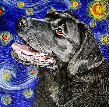 Starry Night Lab by Karen Howell