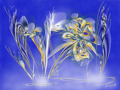 Starry Night by Saina Art