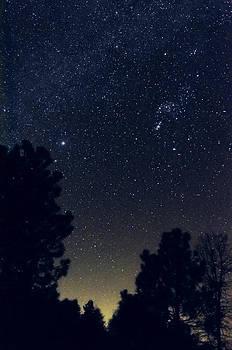 Starry Starry Night by Greg Amptman