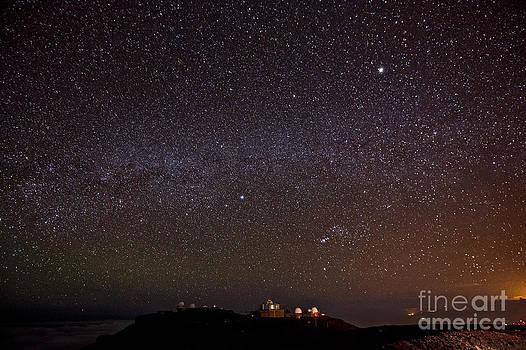 Jamie Pham - Starry Starry Night