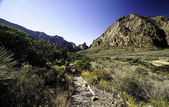 Alan Roberts - Start of the Trail