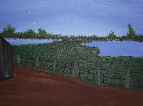 Stary night on the farm by Lois D  Psutka