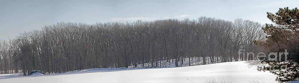 State Road_Panorama 3 by Joseph Yarbrough