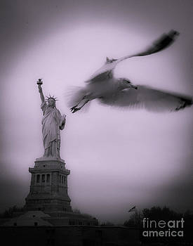 Statue And Seagull  by Alex Tuzinsky