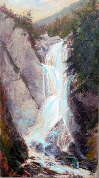Steady Brook Falls by Mark Hayden