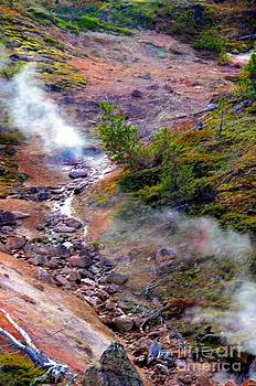 Steaming by Kathleen Struckle