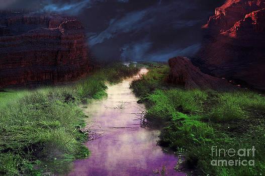 Gunter Nezhoda - Steamy Creek