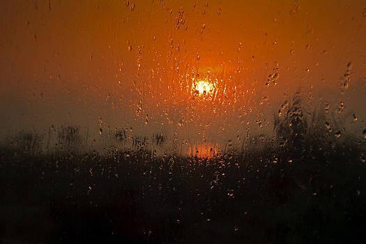 Kantilal Patel - Steamy Sunrise