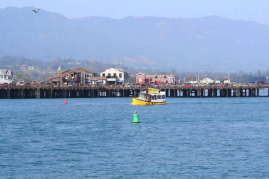 Art Block Collections - Stearns Wharf