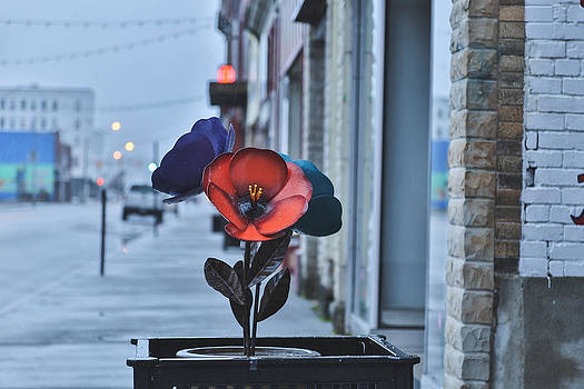 Jimmy McDonald - Steel Blooms