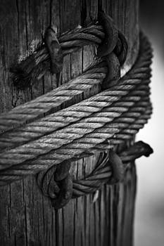 Steel Cable On Pile by Bradley R Youngberg