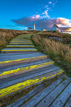Steps to Cape Spear by Gord Follett